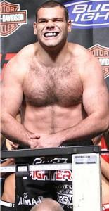 Gabriel Gonzaga UFC