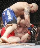shane carwin beating on lesnar