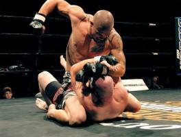 MMA photo