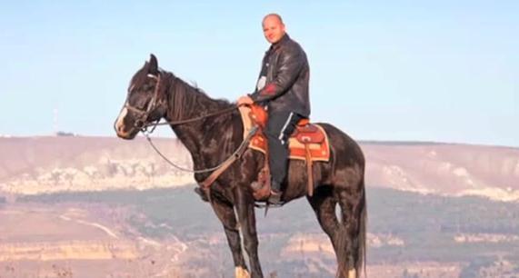 fedor horse