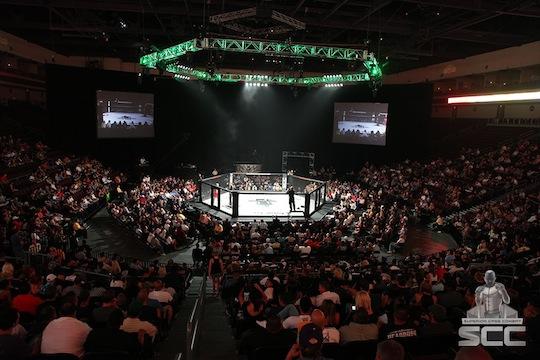 Robe Joins the M1 Global MMA Challenge | ZioGiorgio.com
