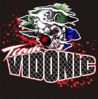 team vidonic