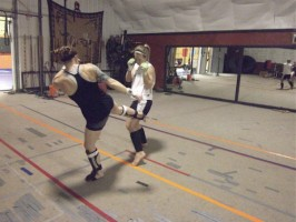 vidonic sparring Anne