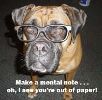 Smart Lola