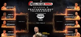 ProMMAnow.com's Guide to Bellator 88