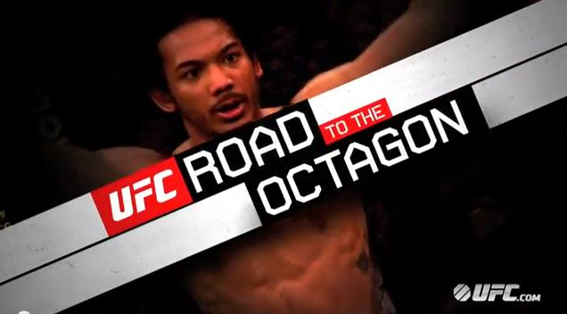 Road to the Octagon