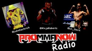 pro mma now radio