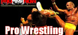 RAW TV rating, WWE policy on titles, Summer Slam