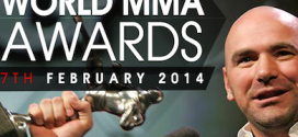 2014 World MMA Award Winners