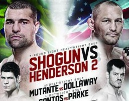 ufc fight night 38
