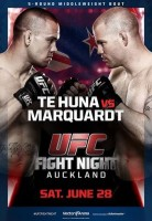 ufc fight night 43