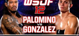 WSOF 12: Palamino vs. Gonzalez results and recap