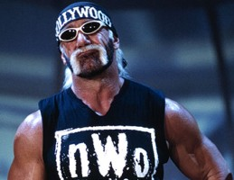 hollywood hogan