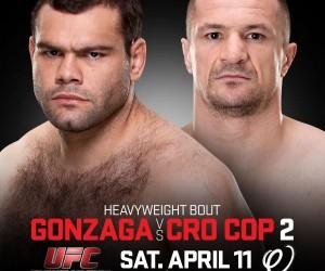 UFC Poland