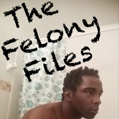 The Felony Files #1