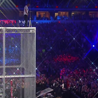 shane mcmahon-on cage